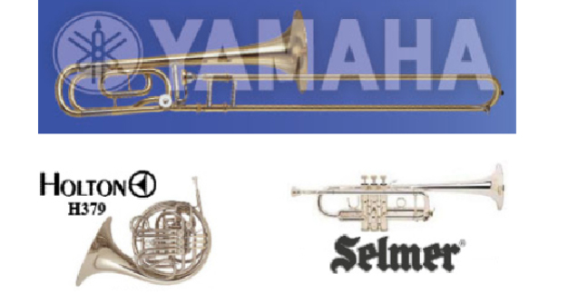 Cropped rieman music horns