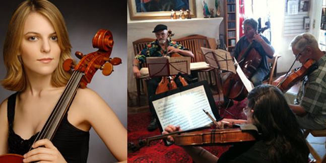 Metzler Violin Shop's Profile   Musicpage
