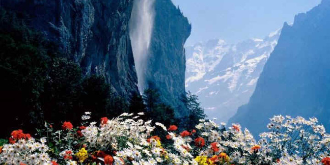 Cropped alpine waterfall majesty
