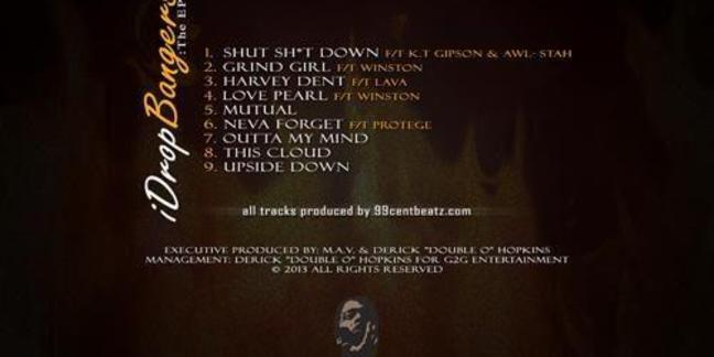 Cropped idbep back cover